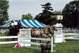 A team of horses with an elegant carriage in two exits the Villa Louis Carriage Classic arena.