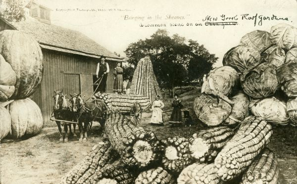 A man and a team of horses pull oversized corn near a barn and piles of oversized corn, pumpkins and cabagges as three women watch from the side.