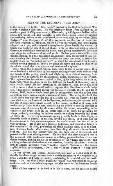 Opening of the Mississippi: George Driggs was Sergeant Major of Co. E if the 8th Infantry, the highest-ranking enlisted man in the unit. His duties included keeping the company's records and caring for its ceremonial flag. He wrote this book in 1864, before the war had ended. Its first 48 pages contain a straightforward chronological account, rosters, orders, and descriptions of Old Abe (pages 37-43), the bald eagle carried as a mascot by his regiment.
