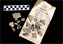 Artifacts from an archaeological site in Wisconsin.