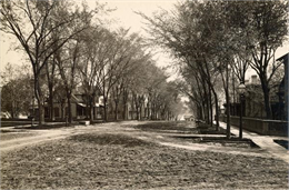 View looking east down 100 block of East Gilman Street, August 2, 1889.