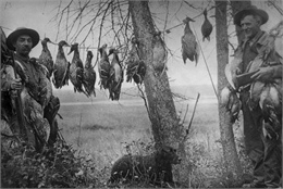 Two men standing holding guns, with birds draped around their necks from hunt. Line strung between trees shows additional kill from duck hunt. A dog sits in the grass between the men.