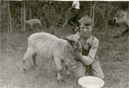 Earl Woodbury, age 14, a student at Cloverland School, poses with a sheep on his home farm.