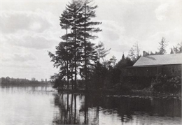The Ark Cottage on the Shoreline of Archibald Lake