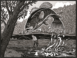 A bass arces into the open as a fisherman in waders reels in his catch in this pen-and-ink drawing by Madison artist Sid Boyum